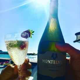 Frizzante je lehké a svěží, a proto se hodí jako aperitiv, drink k bazénu, ke vlahému večeru na balkóně nebo jako základ pro koktejly. V kolekci FRIZZANTE si jich ochutnáte rovnou 6.   I na konci léta můžete krásně zaperlit! 🥂  #montelvini #frizzante #sparklingwine #summervibes #vinoklub