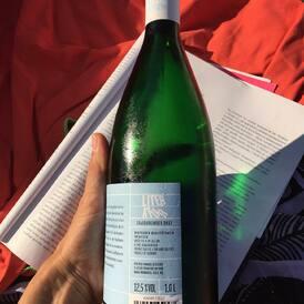 Nejlepší čtení na dovolenou: litrovka naturální Rulandy šedé, ročníku 2017 - a to pro to, že se na ni nespěchalo. Úplné relaxační pití.  LITERATUR: liter + natur ---> povinná dovolenková četba nejen naturisty  #dovolena #literatura #grauburgunder #wine #vinoklub #vino #letnipiti