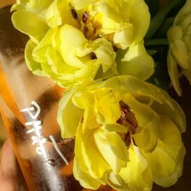 Na webu už nám to rozkvetlo! Letošní HORT ROSÉ je v prodeji🌸 K jaru patří stejně jako první sluníčko a tulipány💗   #rose #ruzove #vino #spring #tulips #wineandflowers #winemoments #beautiful #winejob #vinozmoravy #moravia #moravianwine