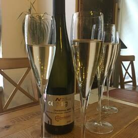 Tak ať do nového roku vykročíme ve zdraví! Symbolicky jsme si dnes připili Chardonnay se zvýšeným obsahem antioxidantů z Nového vinařství. Na Vínovinách máme o zdravotních účincích resveratrolu a o NVR - převratné metodě výroby vína - celý článek. Na zdraví! Na čtení! #resveratrol #antioxidants #wine #winelover #cheers #winebloggers #novevinarstvi #chardonnay #jiznimorava #bilevino